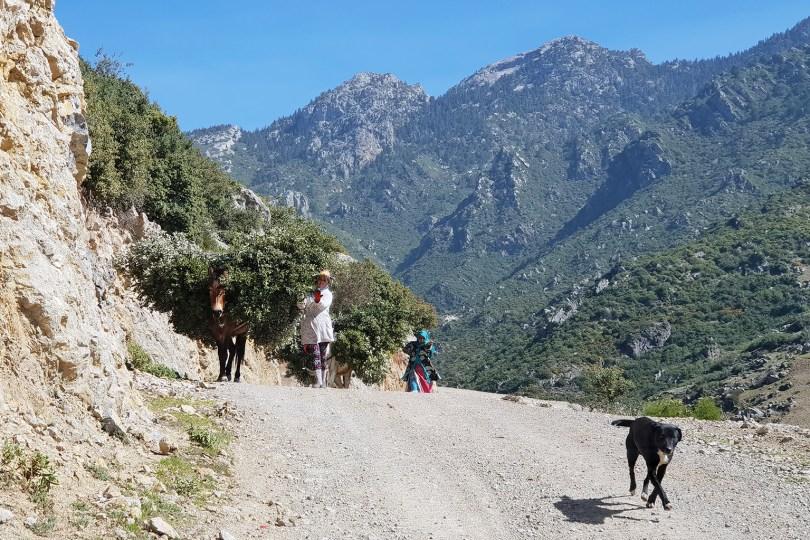 Tanger - Route de Tisemlale