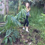 Jungle Intern in Hawaii