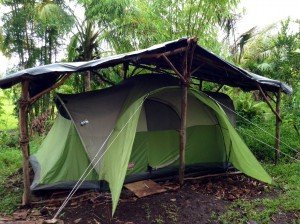 Rain Forest Tent in Hawaii