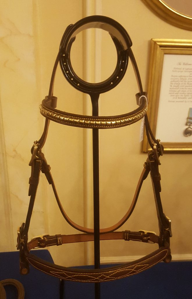 Stallion Inhand Bridle