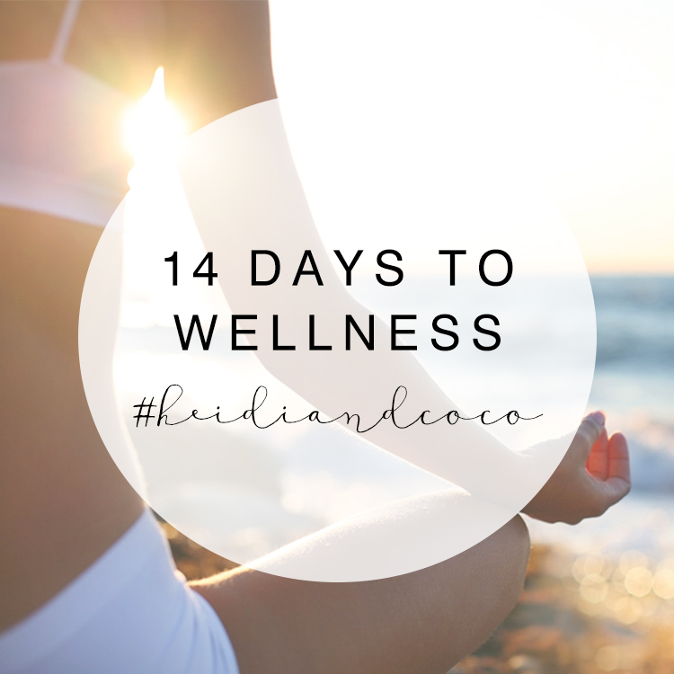 14 Days to Wellness / www.heidiandcoco.com