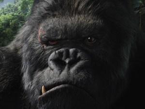Golilla Chews - King Kong