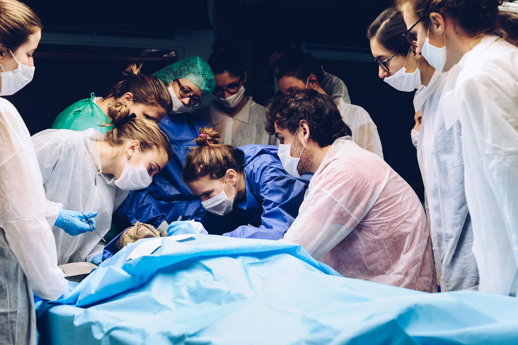 cours de dissection