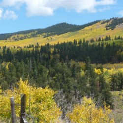 """Fall Colors in the Rockies """""""" get out of the car and get on the trail"""