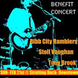 HeidiTown favorite coming to Colorado - THIS WEEK - musician Stoll Vaughan