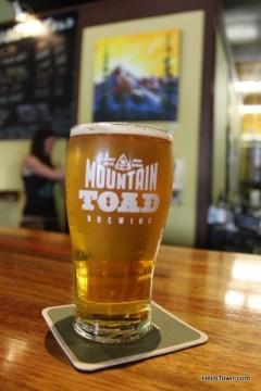 Mountain Toad Brewing in Golden Colorado HeidiTown (1)