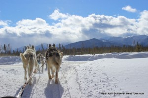 Winter Park Dog Sledding. Favorite picture. HeidiTown.com 2013