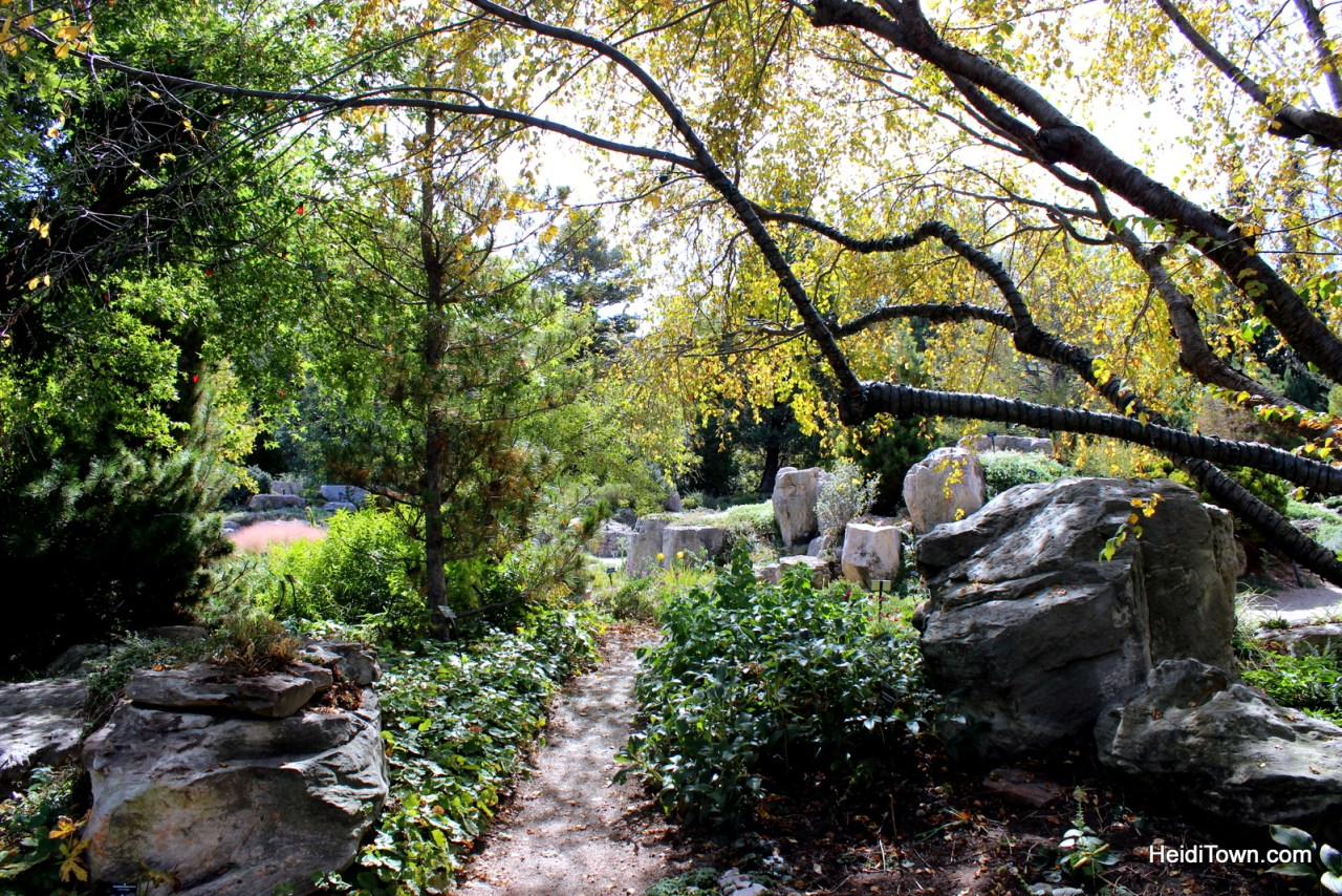 A fall visit to the Denver Botanic Gardens. HeidiTown (5)