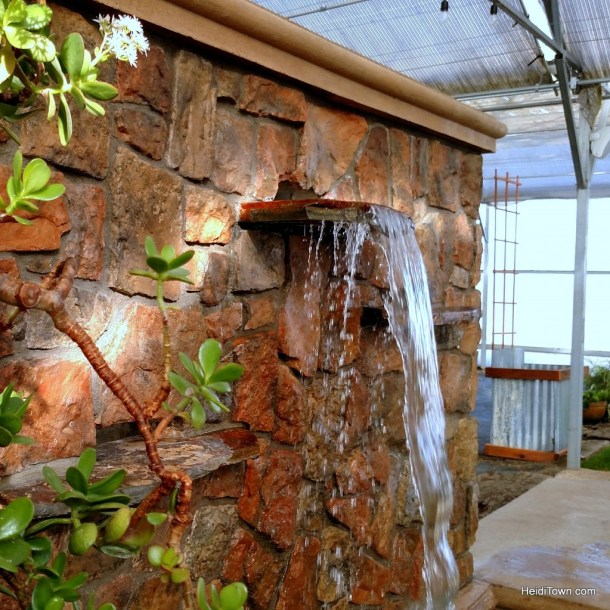 An Oasis in Southern Colorado. The Greenhouse adults only hot springs area. HeidiTown.com