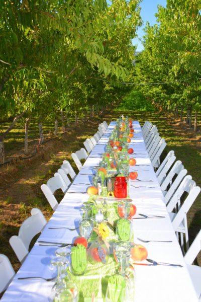 Feast in the Fields Palisade Peach Festival