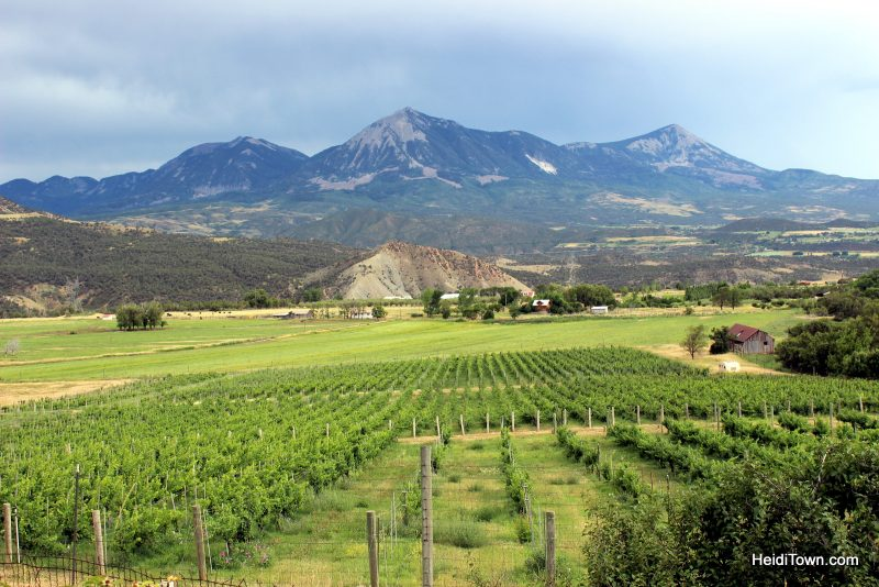 featured-festival-mountain-harvest-festival-the-view-from-garvin-mesa-north-fork-valley-photo-by-heidi-kerr-schlaefer