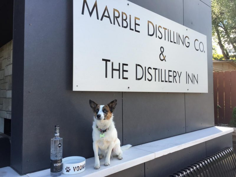 Dog-Friendly Hotels in Your Favorite Colorado Destinations The Distillery Inn