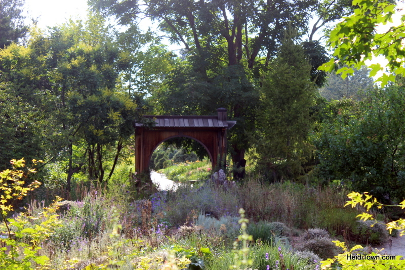 Shooting All the Flowers at Denver Botanic Gardens (17)