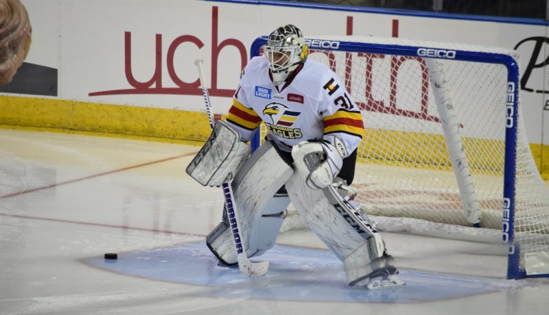 A Night Out With the Colorado Eagles, goalie, photo by Sierra Spiller