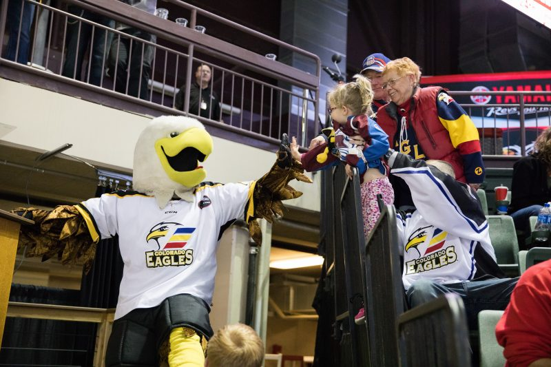 A Night Out With the Colorado Eagles, mascot, photo by Jordan Reyes