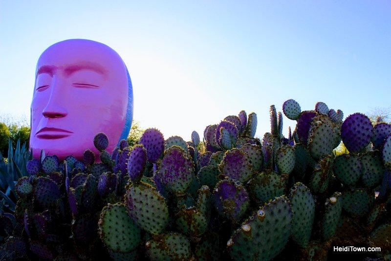 Visit Another Planet Arizona's Desert Botanical Garden. HeidiTown (4)