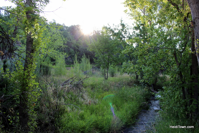 Off the Clock in the North Fork Valley of Colorado on HeidiTown (1)