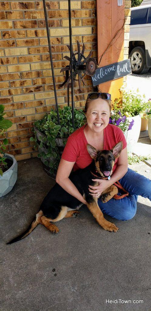 Meet Fritzi, the German Shepherd Colorado Dog & Head of Security. HeidiTown (1)