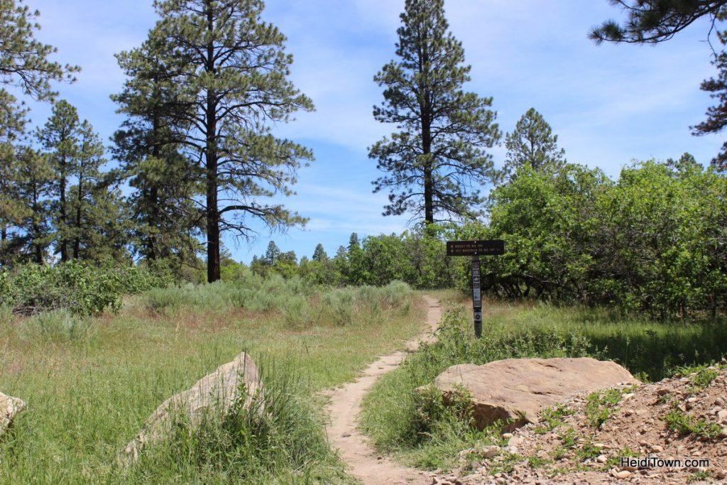 Boggy Draw near Dolores, Colorado. The Heidi Guide