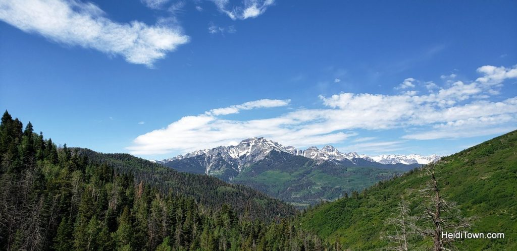 Trail Ride to the Top of the World with Action Adventures in Ouray. HeidiTown (5)