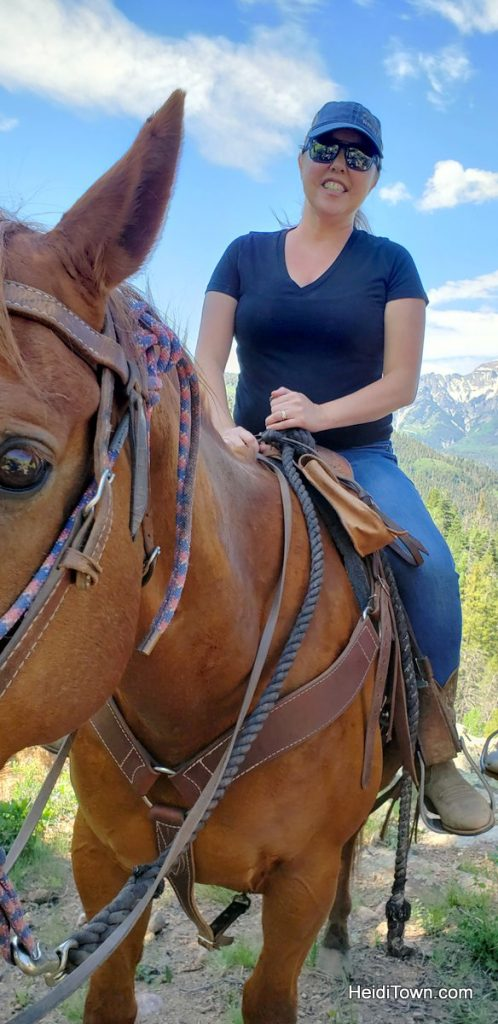 Trail Ride to the Top of the World with Action Adventures in Ouray. HeidiTown (9)