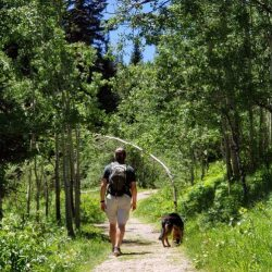 Why to Bring the Dog to Snow Mountain Ranch, Colorado. HeidiTown (1)