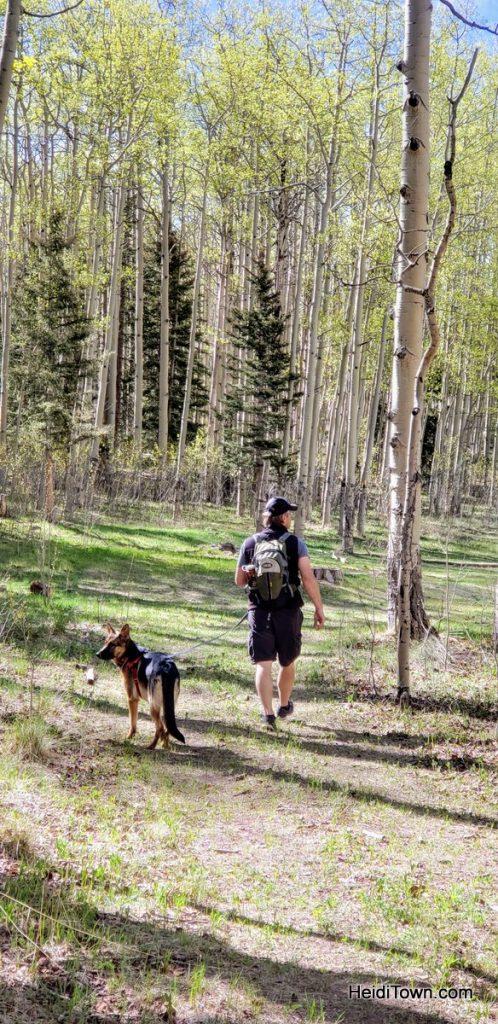 North Rock Creek Trail #701 in spring. San Luis Valley. HeidiTown (1)