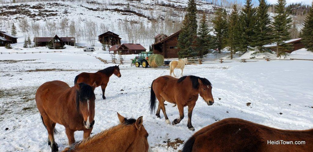 Hot Tubs & Horses at Vista Verde Ranch in Colorado. HeidiTown (14)
