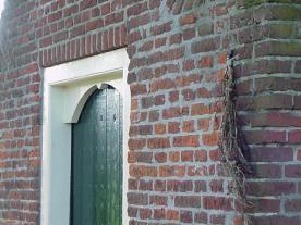 Sint Janstros tegen de muur