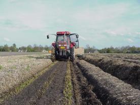 De wortelrooier hangt achter de tractor