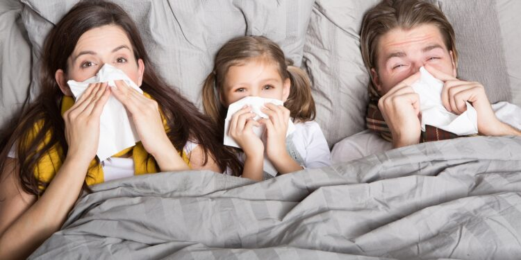 Two adults and a child are lying in bed blowing their noses with a handkerchief.