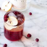 Autumn Drink – Cranberry Apple Gin