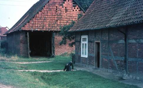 Hol07 134 1960LinaSchweer JudenscheuneRud Seelkopf Scheunenviertel