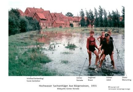 1119 1955xx Hochwasser Aue Bürgerwiesen