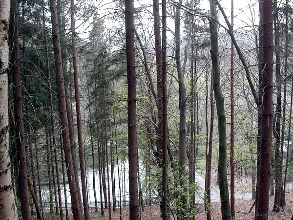 Emmateich am Mühlberg Einsiedel