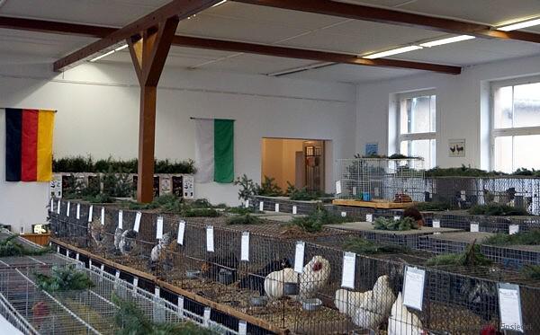 Geflügelausstellung Amtsberg