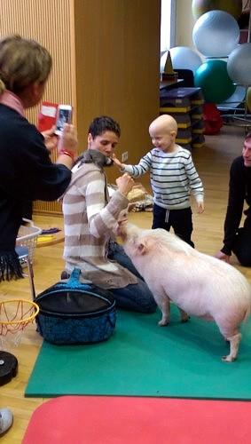 Lukas und Tiere