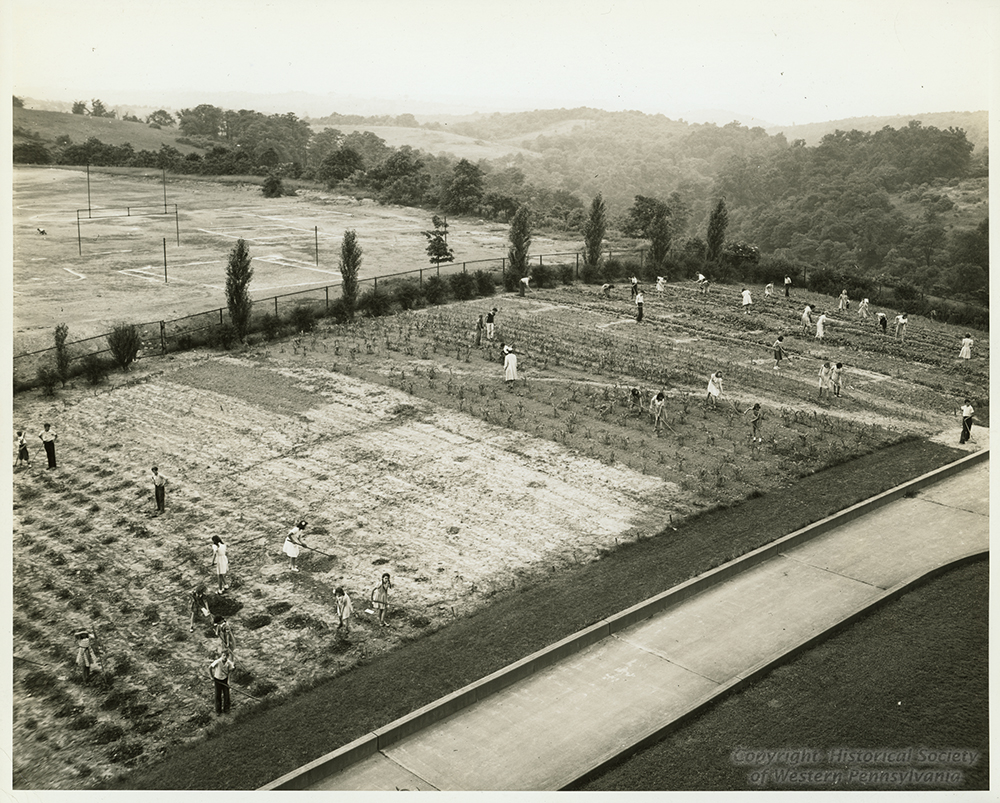Students prepare the soil and cultivate corn at Mifflin School, 1940s. | The Edible Schoolyard, 1915