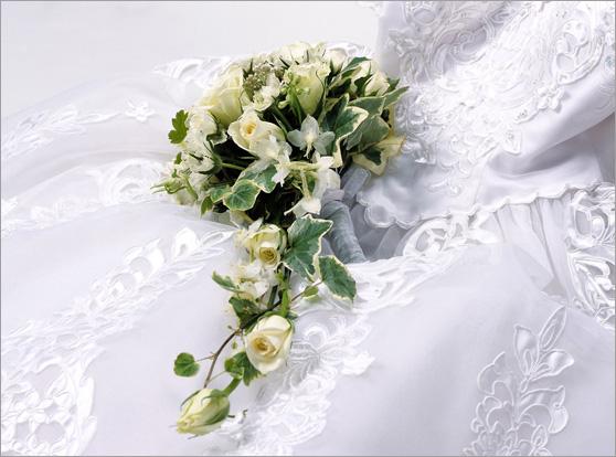 Sofort Heiraten In Danemark Gunstig Heiraten In Danemark 2020 04 02