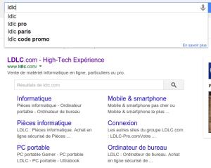 Un exemple de moteur de recherche intégré : la search box
