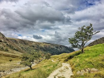 A Well-trodden Path Borrowdale Cumbria Lake District