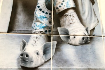 lisbon tiles fox piglet shoes oddball