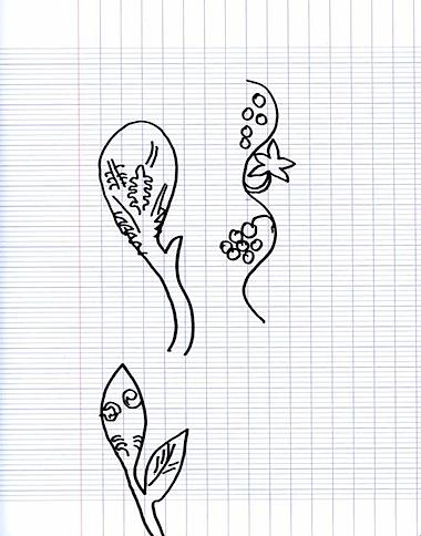 istambul dessin.jpg