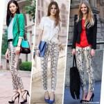 Python Print Pants: From Spring Through Fall