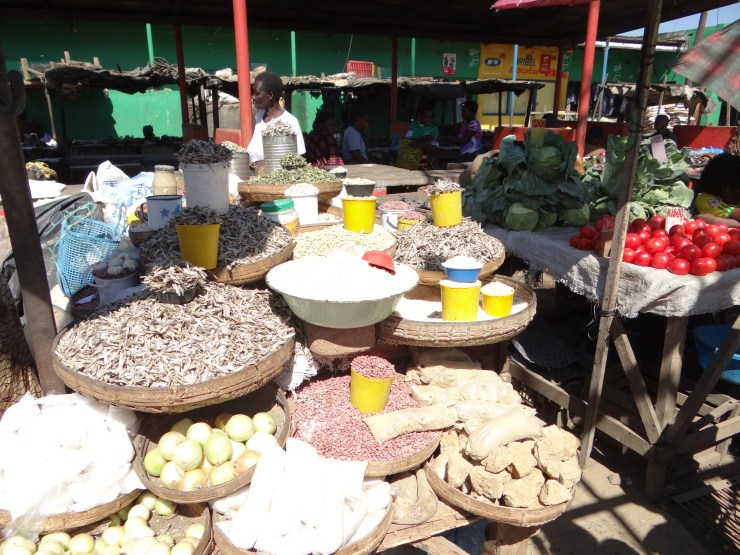 Beginner's Guide to Backpacking Africa - Dambwa Market, Livingstone Zambia