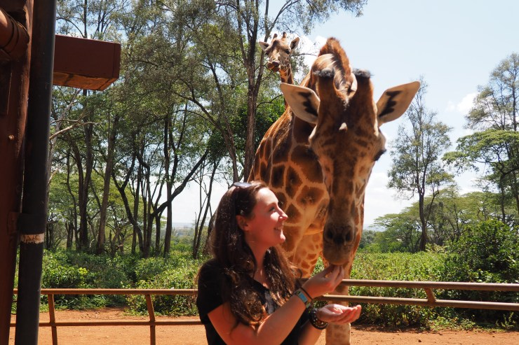 The Giraffe Centre in Nairobi