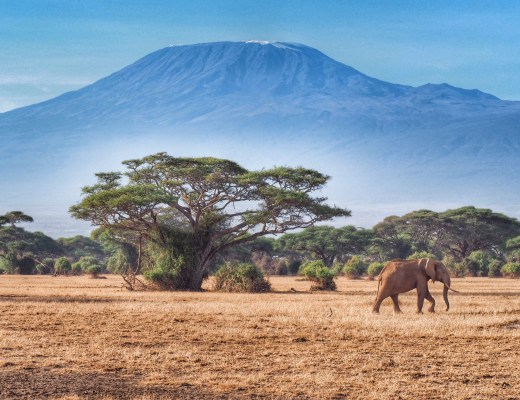 Kenya and Tanzania Itinerary