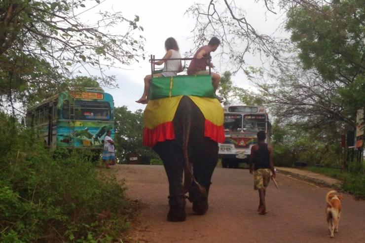 Please Don't Ride Elephants