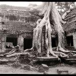 ©Jason Florio - Angkor Wat #1, Cambodia. BW - temple ruins