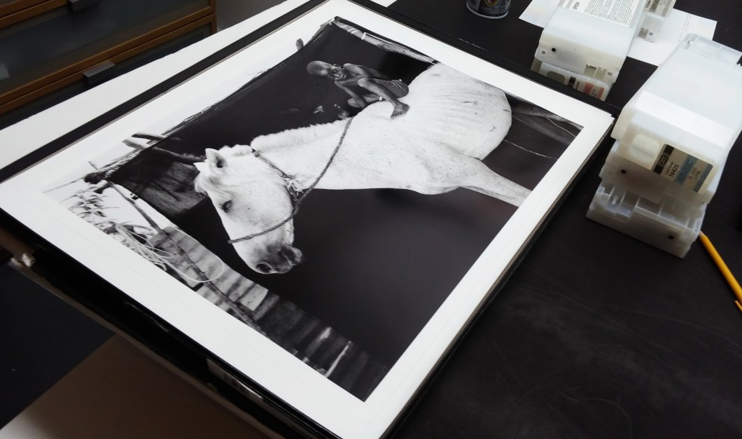 Makasutu Jason Florio. 'Ismaila on his white horse, Jumpex'-large format BW print waiting to be packed.
